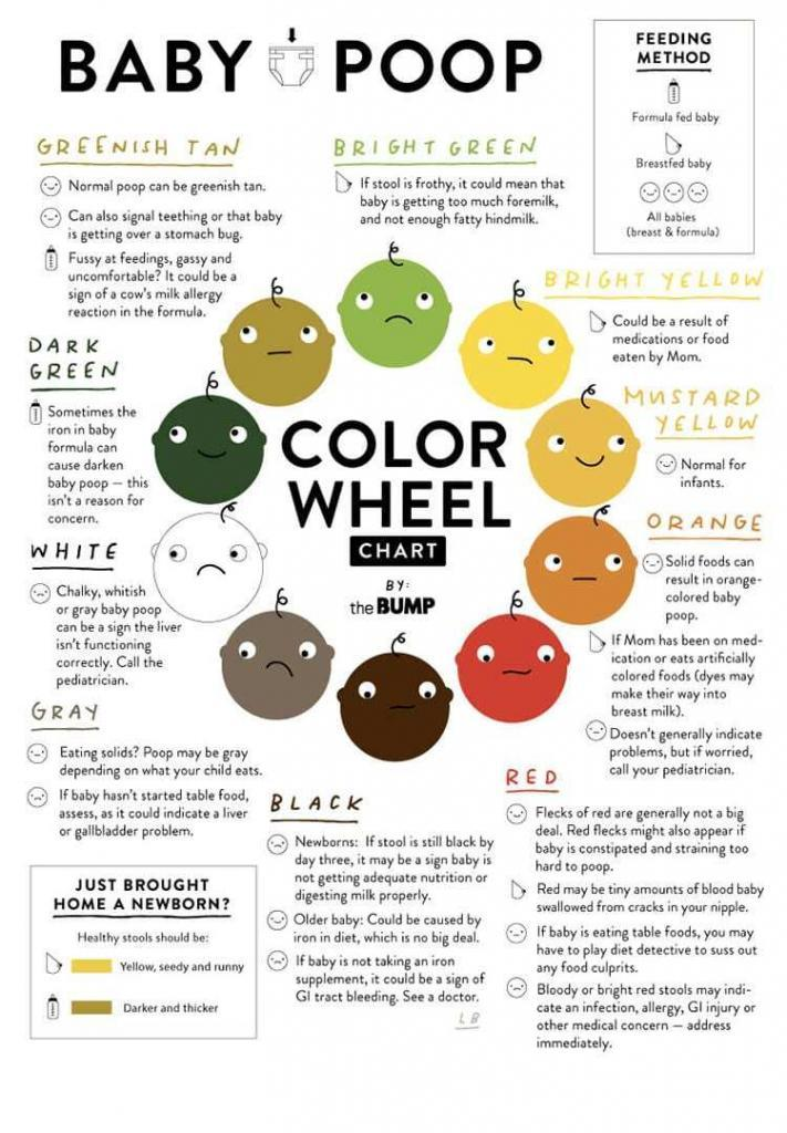 baby-poop-color-wheel-up
